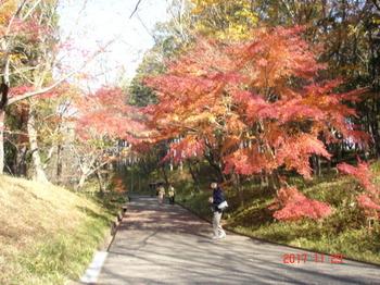 川村美術館 (14).JPG